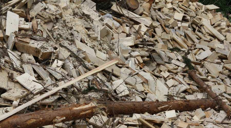 Qué es la biomasa y sus ventajas