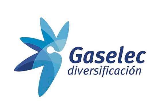 GASELEC DIVERSIFICACION, S.L.